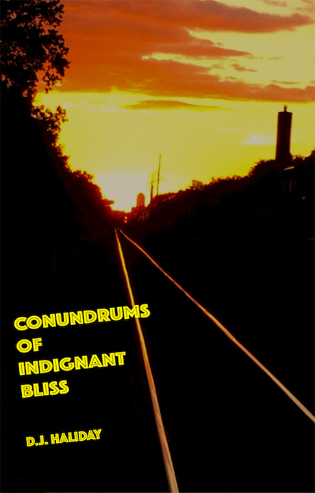 Conundrums of Indignant Bliss by D.J. Haliday